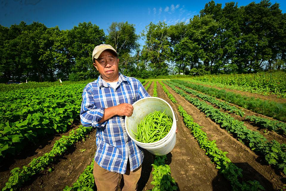 Hmong farmer Groundswell blog