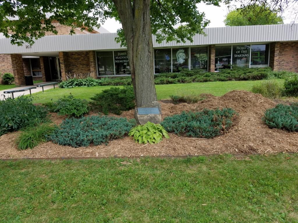 MMHD Garden after